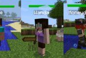 Minecraft Friend Mod – No longer alone